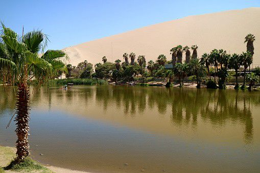 Huacachina is a small village located in the southwest of Peru. It is hidden between the gigantic sand dunes. Behind the small town, in the background you can find the larger, busier Ica. From Huacachina you can visit the famous Nazca lines. One of Peru's best-known sights and a must-see if you're in the area.