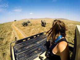 Budget Digon Safari to Tarangire National Park